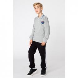 Футболка-поло для мальчика, цвет серый, 2024 3032047