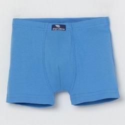 Трусы-боксеры для мальчика, Синий, CAJB 10033-42